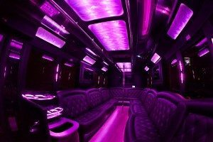 san diego 35 passenger party bus interior