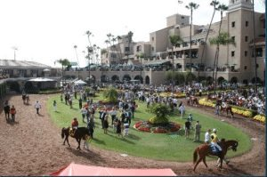 del mar opening day at the race track 2014